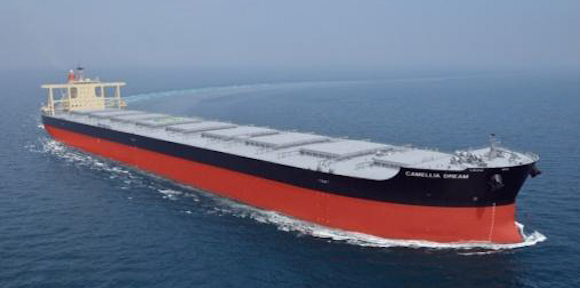 Bulk-carrier-of-the-type-featuring-the-NSafe-Hull.png