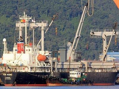 Panama-flagged cargo ship capsizes off Vietnam, 15 sailors missing