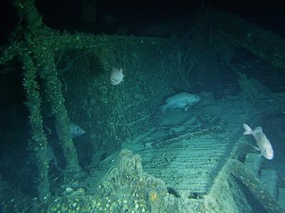 Treasure hunters seek £300bn of gold bullion from war wrecks