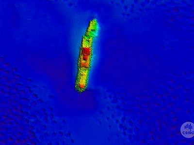 Macumba shipwreck found in Arafura Sea more than 70 years after sinking in Japanese air raid