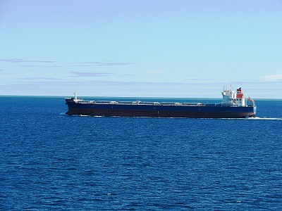 Oldendorff to send largest carriers to load logs from New Zealand