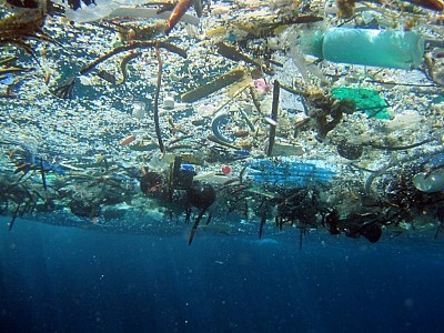 Big Plastic Trash Plan Is Just a Drop in the Polluted Ocean