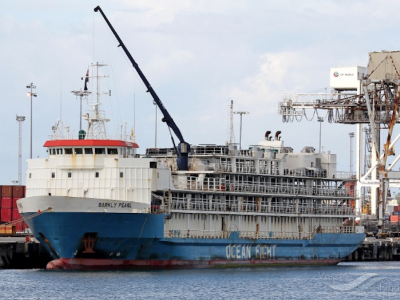 Ageing livestock carriers pose high risk, report shows