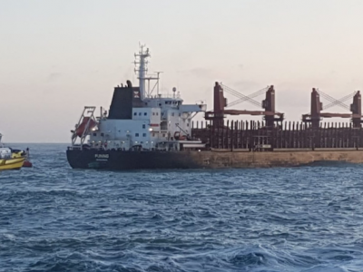 Log carrier loses power off New Zealand coast