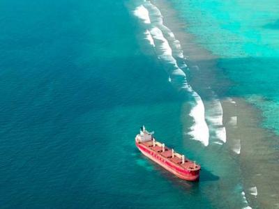 Navios Amaryllis captain accused of negligent behaviour in grounding off Maldives